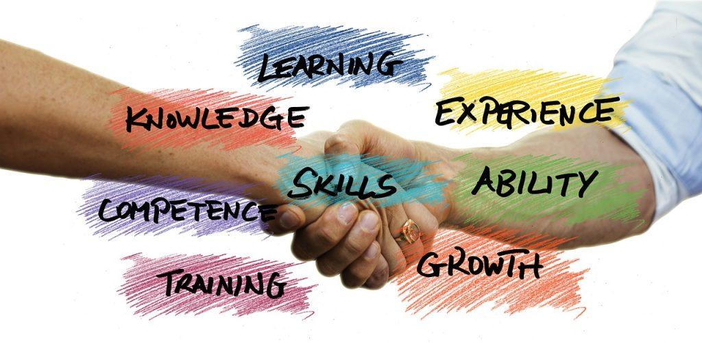 plan de formación en la empresa